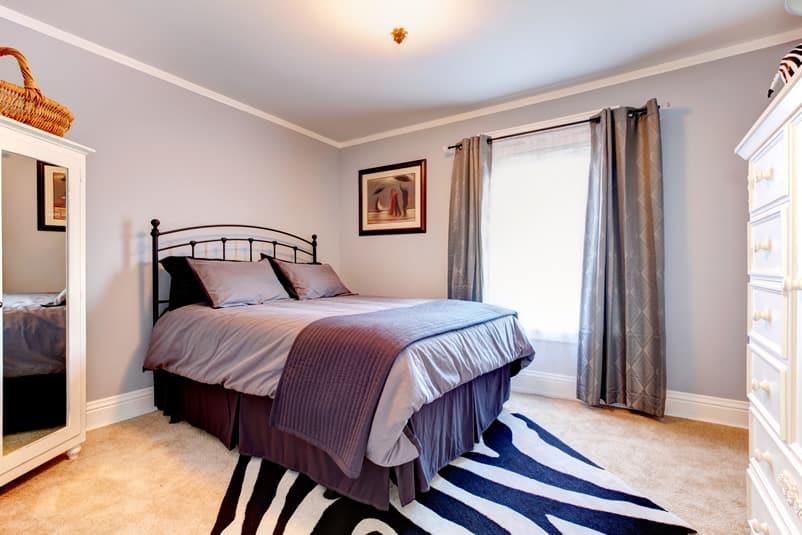 Purple painted bedroom with zebra rug