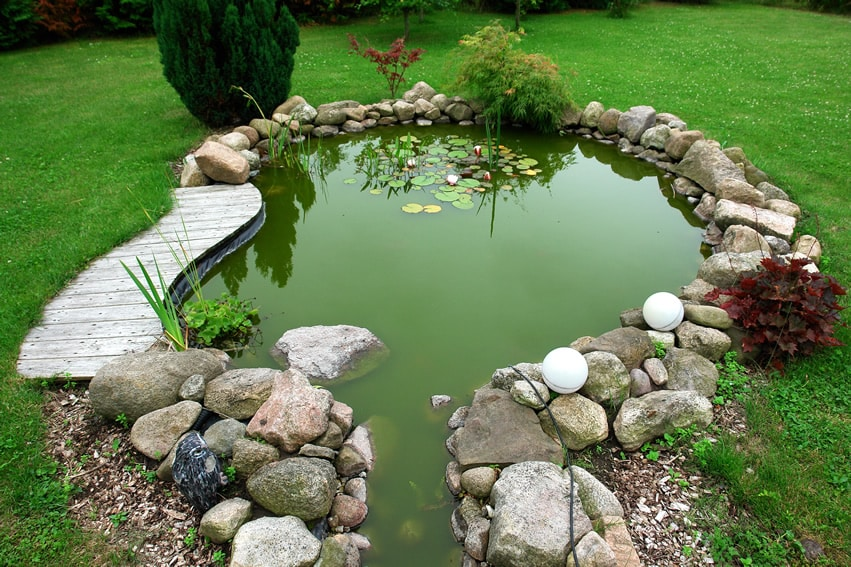 Backyard rock pond with lily pads
