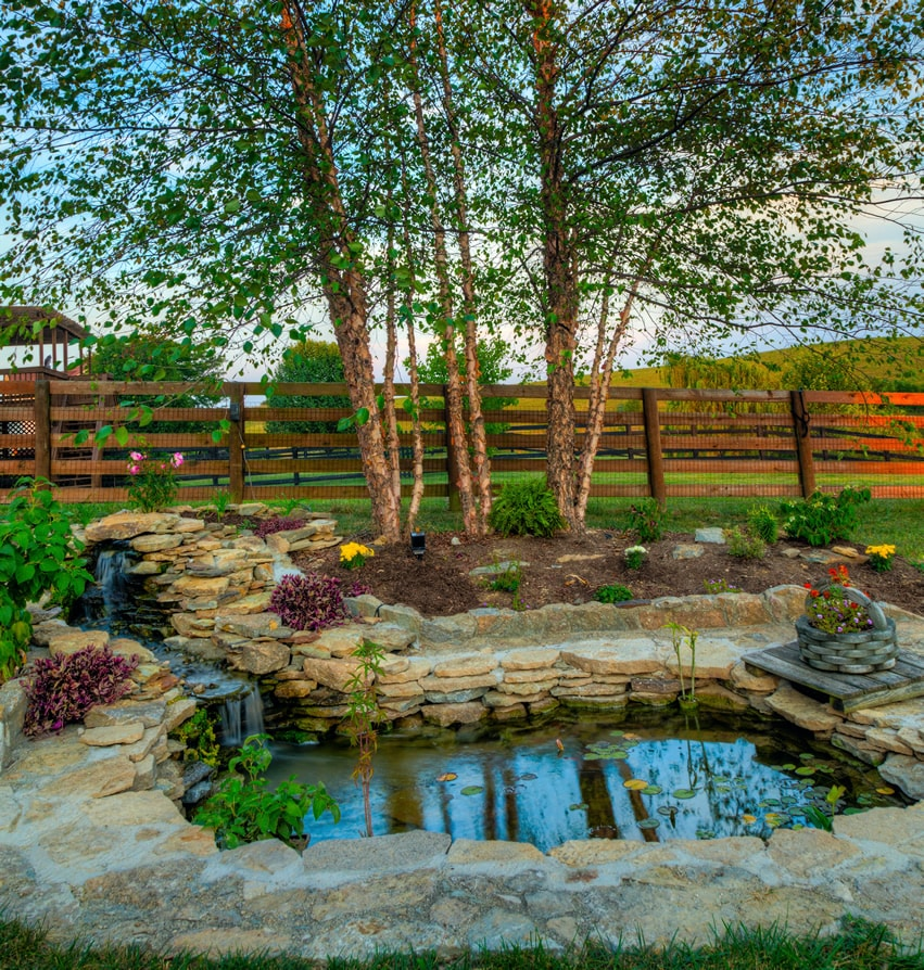 Beautiful backyard water feature pond with waterfall