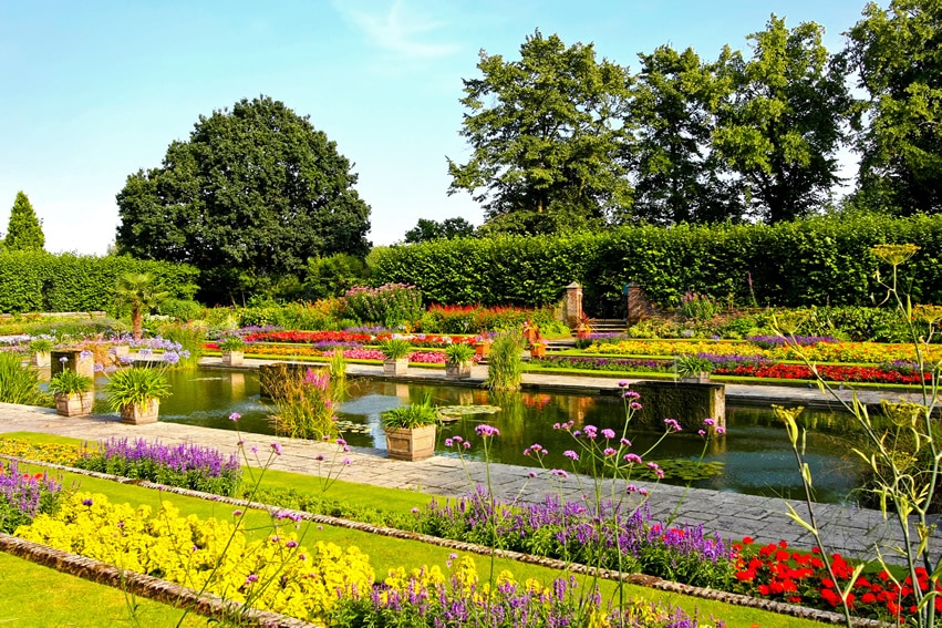 Beautiful garden with rectangular pond