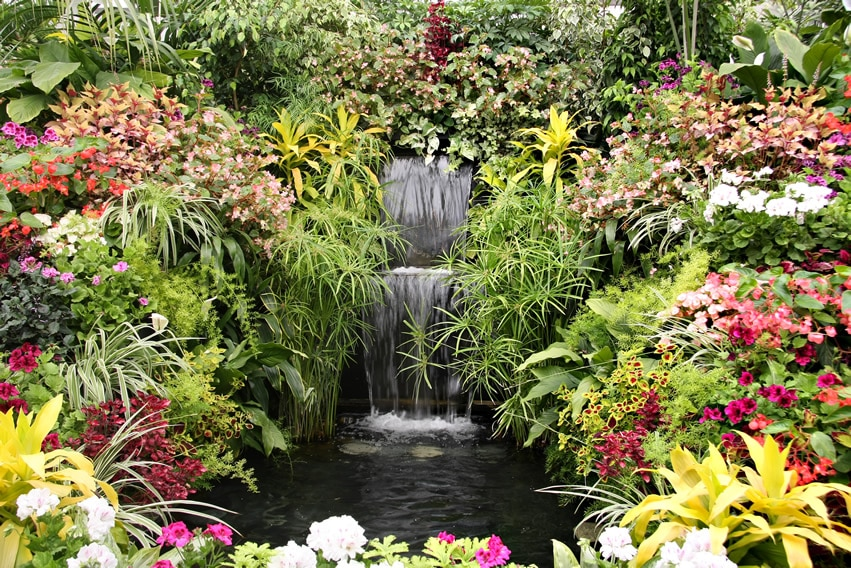 Beautiful garden with waterfall and small pond