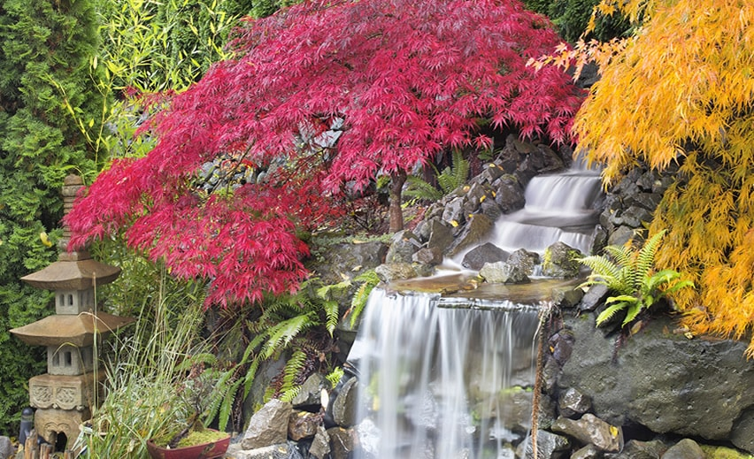 Beautiful waterfall in asian garden