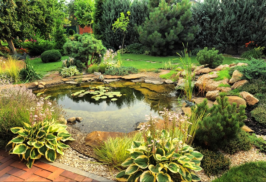 Garden pond in backyard with brick path