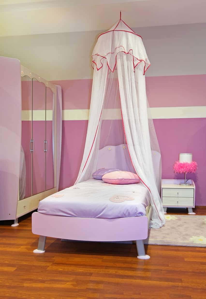 Little girl's room with princess canopy over the bed