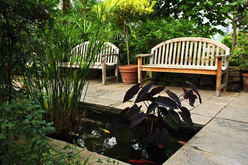 Koi pond in garden with sitting benches