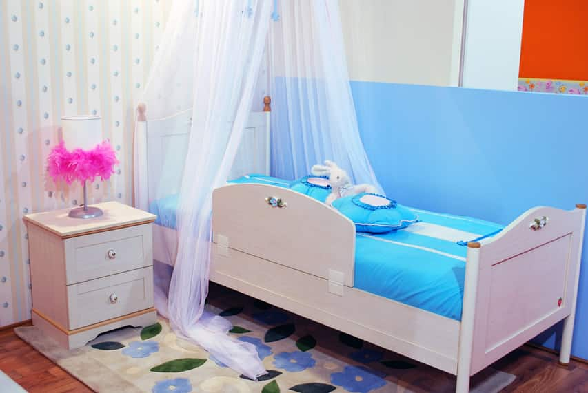 Blue and white sheer canopy girl's room