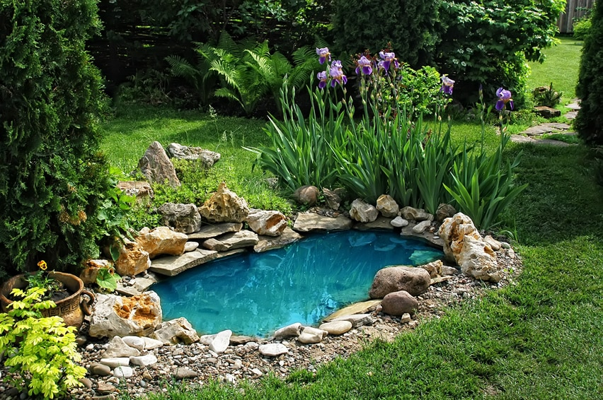 Pond water feature in garden with clear blue water