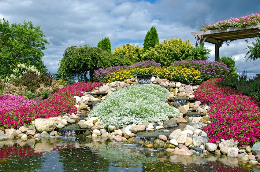 Rock waterfall with colorful flowers and pergola