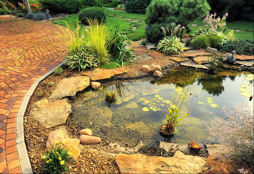 Small pond water feature in backyard garden with lily pads