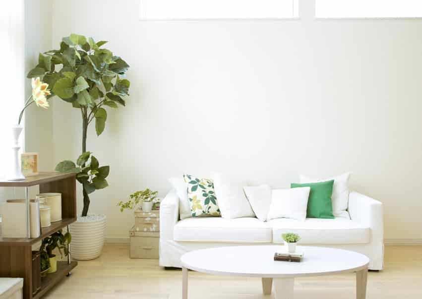 Clean living room with simple design and white couch