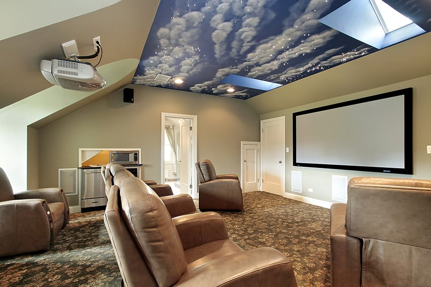 Movie room with screen projector and ceiling mural
