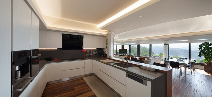 Modern kitchen with tray ceiling, u-shape design and open layout