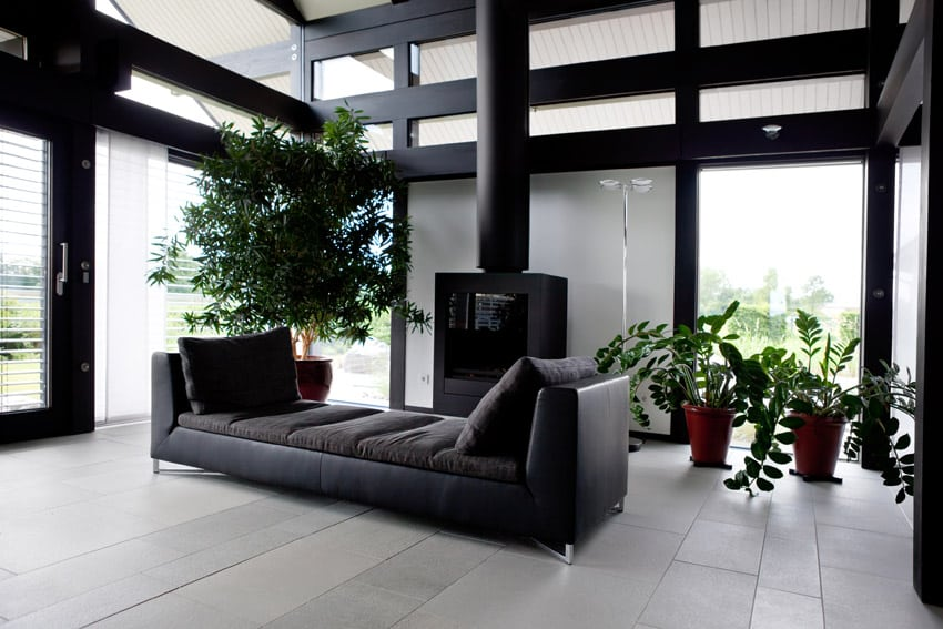 Black living room design with fireplace, high ceilings and indoor plants