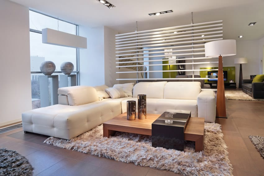 Modern living room with shag carpet