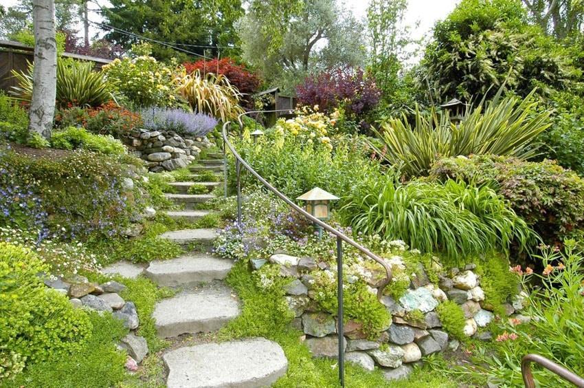 Limestone steps through garden