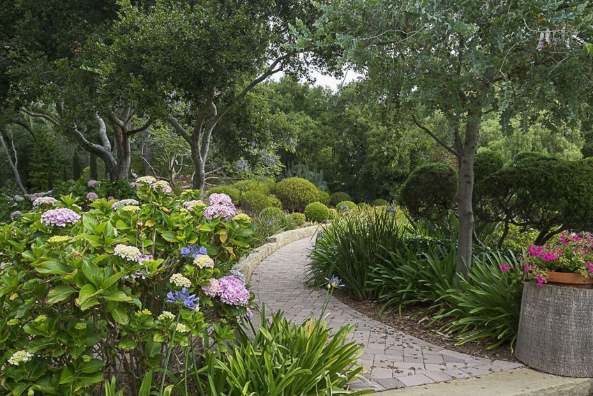 Paver walkway through garden with bushes and trees