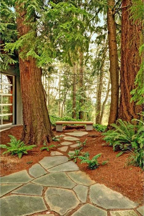 Quartzite flagstone walkway through trees