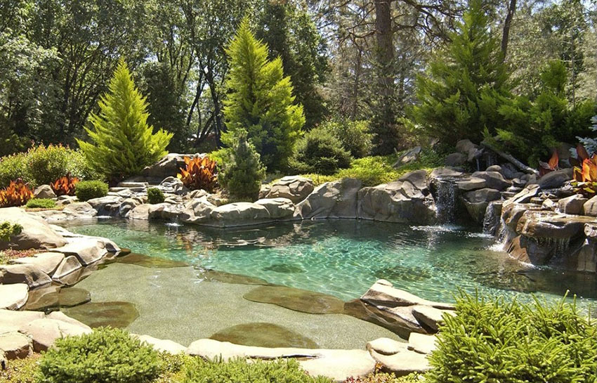 Natural pond design swimming pool with water features
