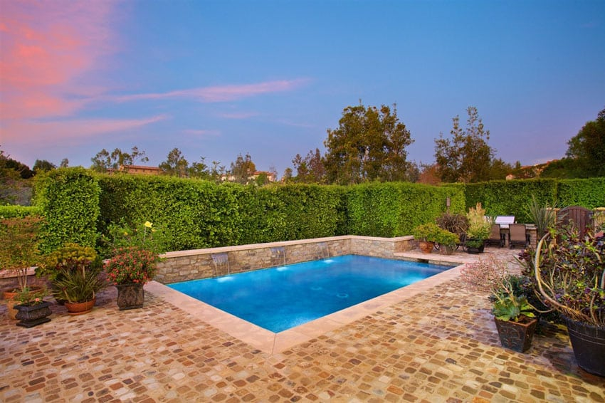 Swimming pool with water features and privacy hedge