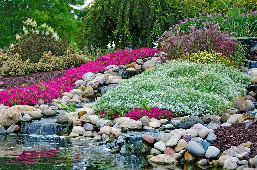 Beautiful flower garden waterfall and pond