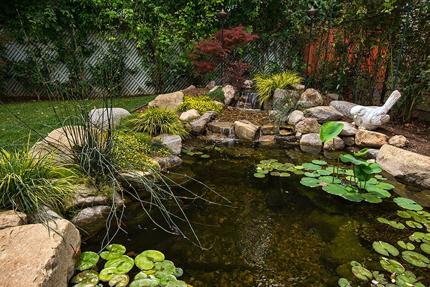 Small rock waterfall flowing in to garden pond with lily pads in backyard