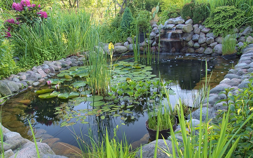 53 backyard garden waterfalls pictures of designs for Ornamental pond waterfall