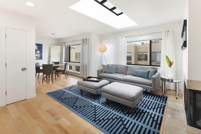 Small modern living room with gray sofa, skylight and light wood floors