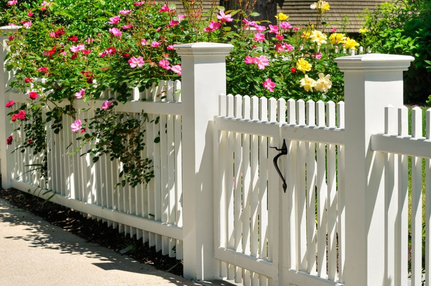 Picket fence with posts and end caps