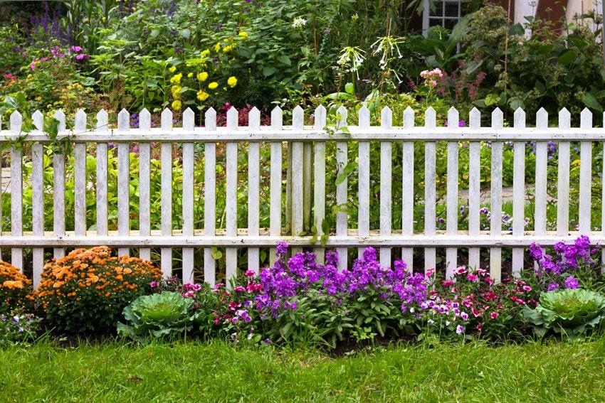 White picket fence through flower garden