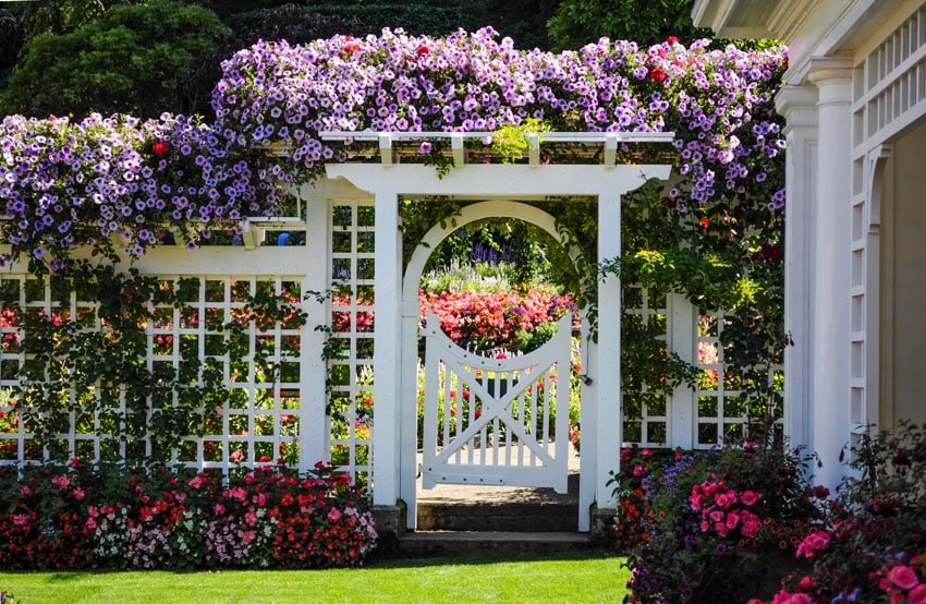 White wood lattice fence with flowers in garden