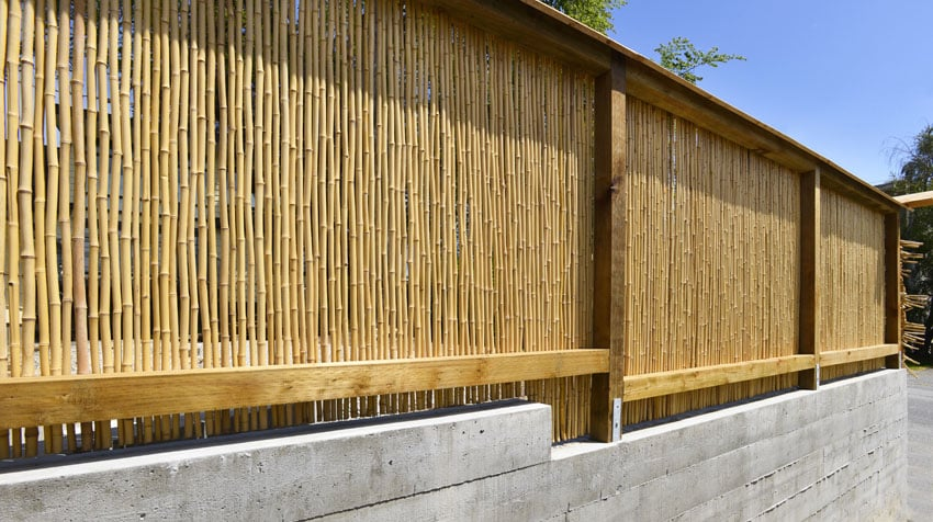 Wood and bamboo fence
