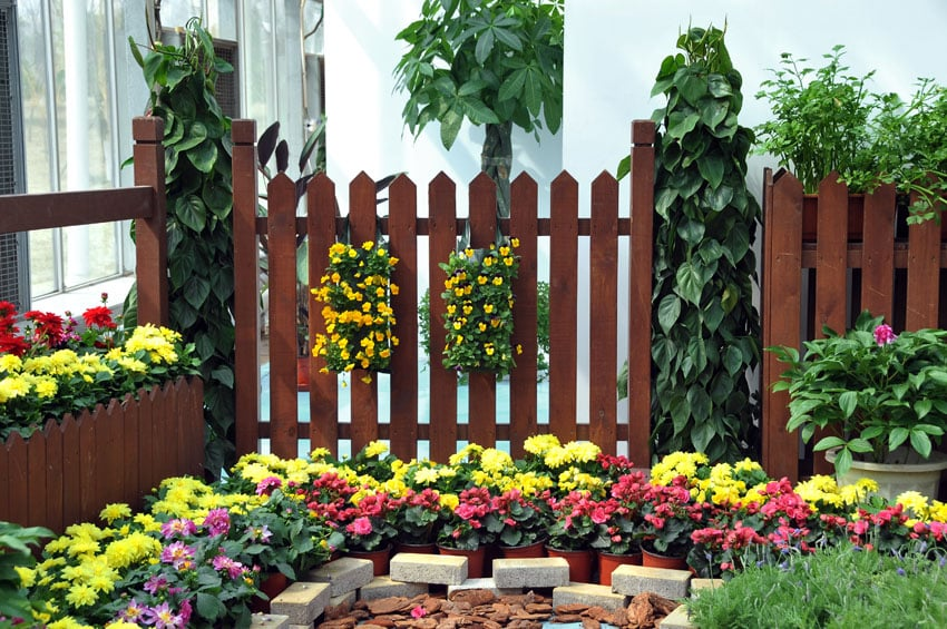 Wood garden fence with flowering plants