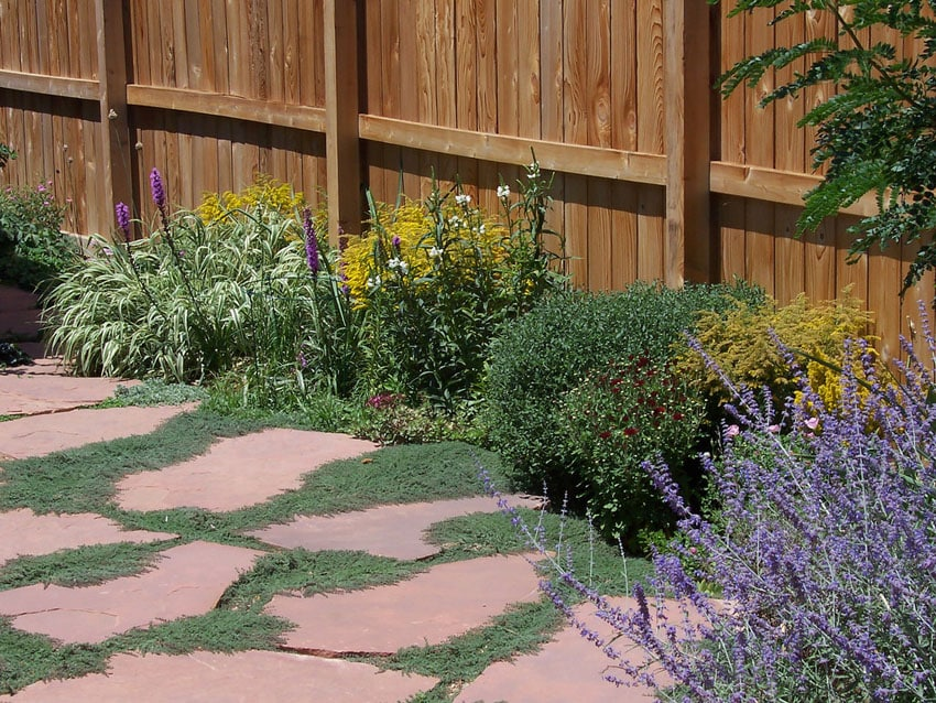 Flagstone patio with plant growth between stones