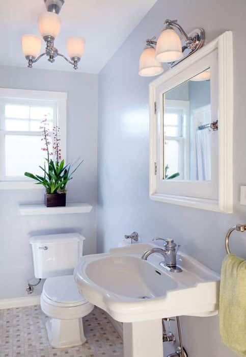 Narrow bathroom with small shelf with plant over toilet